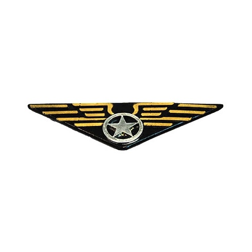 Aviator Pin - Pilot Wings image