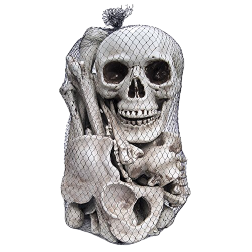 Bag Of Bones image